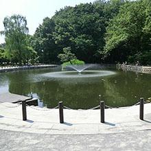 ため池_220